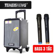 Loa kéo Temeisheng A8-4 - 3 tấc kèm 2 micro không dây