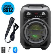 Loa xách tay di động karaoke BS12