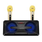 Bộ hai micro bluetooth kèm loa SD301 mẫu mới cực hay