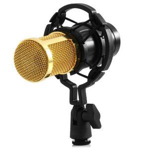 Micro thu âm chuyên nghiệp BM 800