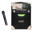 Loa di động xách tay karaoke Daile S17 - LCD Light ấn tượng
