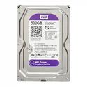 Ổ cứng HDD Western 500GB Tím - Chuyên cho đầu ghi Renew