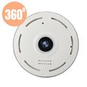 Camera 360 IP Panoramic