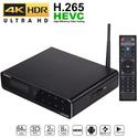 Android TV Box kiêm HD Player cao cấp - Himedia Q10 pro chính hãng