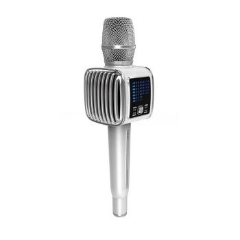 Micro karaoke kèm loa Tosing G6