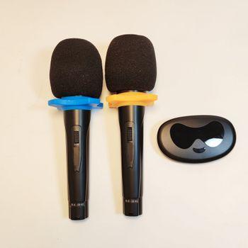 Bộ 2 micro karaoke không dây Professional Wireless - MU 108