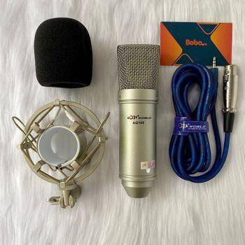 Micro thu âm chuyên nghiệp AQTA AQ-100
