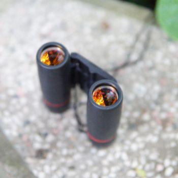 Ống nhòm 2 mắt Sakura 30x60 Mini