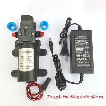 Bơm nước mini áp lực 12V TA3957- Công suất 80W tự động ngắt