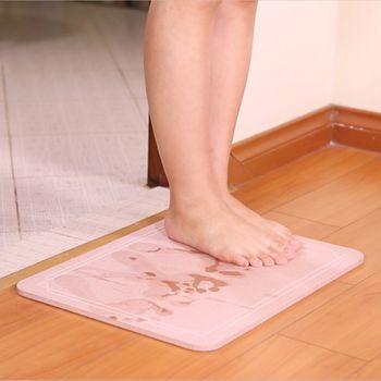 Thảm cứng siêu thấm hút nước công nghệ Nhật Bản 60x39x0.9cm M5