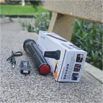 Micro không dây giá rẻ Daile V10