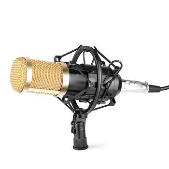 Mic thu âm chuyên nghiệp BM 850