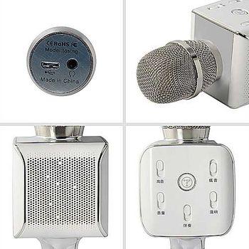 Mic Karaoke kèm Loa Bluetooth Tosing Plus
