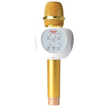 Micro Bluetooth Karaoke ZBX66