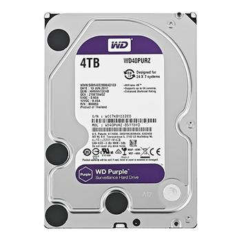 HDD Sata Western 4TB Tím - Dung lượng lớn lưu trữ không giới hạn
