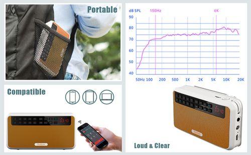 Loa Bluetooth Đa Năng Stereo Siêu Trầm ROLTON E500 chính hãng