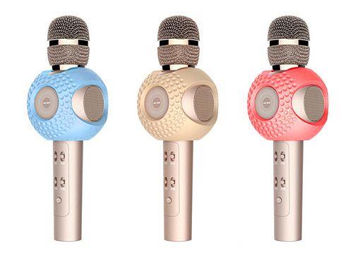 Micro hát Karaoke HIG SEE XT5