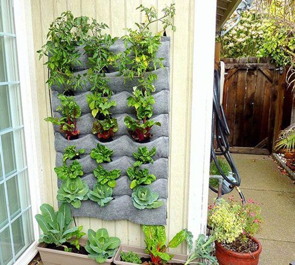 Tự trồng rau trong túi vải 21 ngăn
