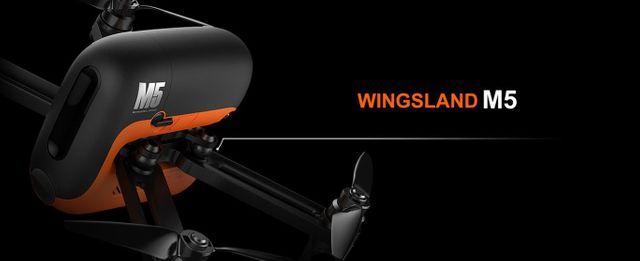 wingsland.jpg