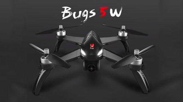 bugs 5w.jpg